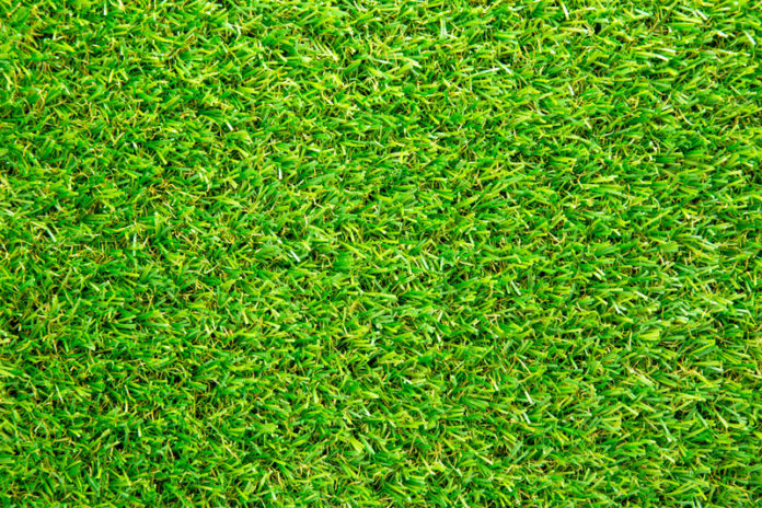 Image of Artifical grass