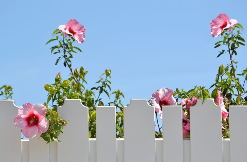 What are the best fence panels - HomeGuideExpert