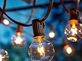 Image of Festoon Lights