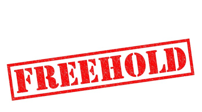 Image of the word Freehold
