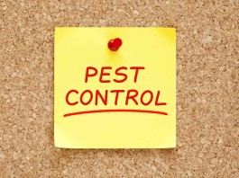 Image of pest control