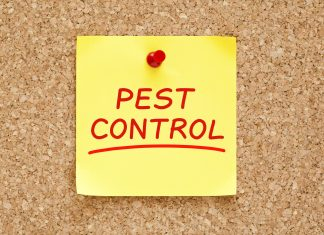 Post it note on a board with the words Pest Control