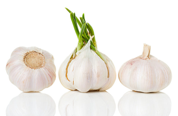 What are the benefits of eating garlic - Home Guide Expert