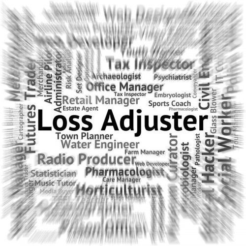 Image of the word Loss Adjuster