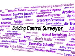 Image of the word Building Control Surveyor