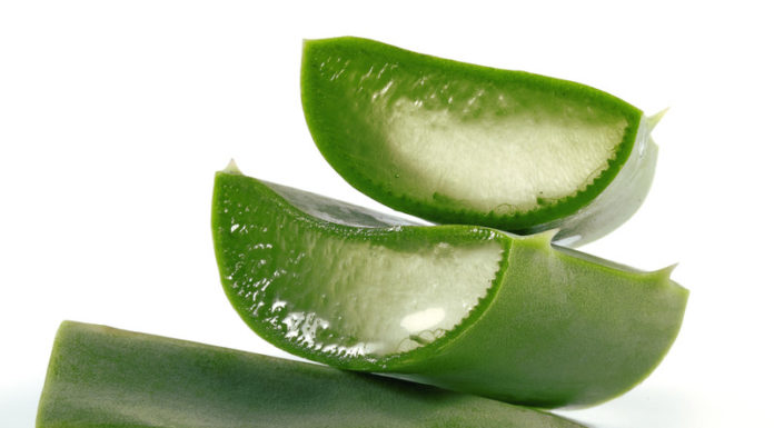 What are the benefits of aloe vera - Home Guide Expert