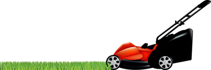 How to Choose the right lawnmower - Home Guide Expert